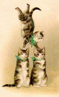 Vintage postcard vintage cat clip art