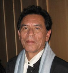 """Wesley """"Wes"""" Studi (born December 17, 1947) is an award-winning full-blood Native American actor and film producer from Nofire Hollow in the Cherokee Nation, Oklahoma, and who has won critical acclaim for his portrayal of Native Americans in film. Studi became politically active and participated in the Wounded Knee Incident at Pine Ridge Reservation in 1973."""