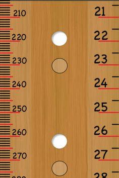 Free Pocket Ruler