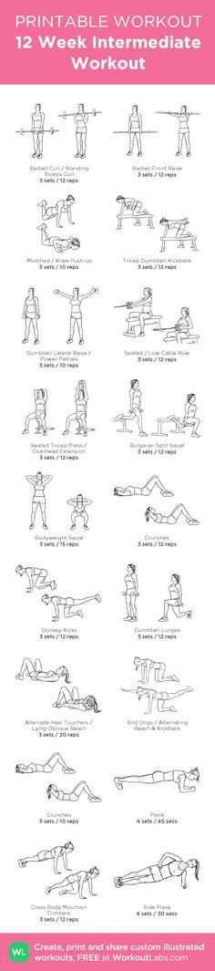12 Week Intermediate Workout: Monday - Upper Body Strength Tuesday - Cardio Wednesday - Full Body [Leg] Strength Thursday - Cardio Friday - Abs & Core Strength Weekend - REST! <3