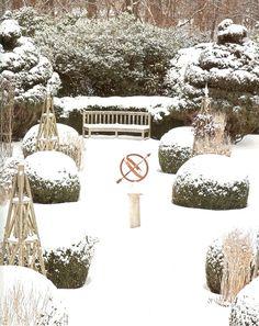 Winter garden landscape