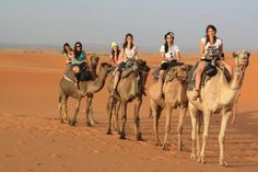 Morocco holidays bring the best of contemporary comfort with a whirlwind adventure through the past. From majestic mountains to graceful minarets, Morocco is the masterpiece of mesmerizing sights and sounds.