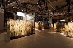 Following the show, Coach hosted a dinner at 225 Liberty Street in lower Manhattan. Produced by Bureau Betak, the cocktail portion featured mirrored panels 5 by 11.5 feet high complemented by tall grasses four feet high—the plant varieties of which were inspired by the original High Line.  Photo: Daniel Salemi