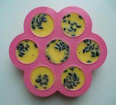 A la douce: Fabrication de boules de nourriture pour oiseaux Dental, Bird Food, Diy, School, Adoption, Pasta, Ballet, Birds, Garden
