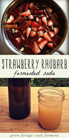 Fermenting your own homemade sodas is fun! Here is a recipe for a homemade strawberry rhubarb soda with a fermented ginger bug. This is a delicious fermented soda full of healthy probiotics that's perfect for the spring season. #fermented #healthydrinks Kombucha, Real Food Recipes, Healthy Recipes, Disney Recipes, Disney Food, Ginger Bug, Soda Recipe, Fermentation Recipes, Fermented Foods
