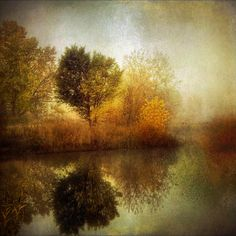 by Roman Rivera