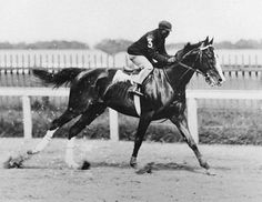 "Alan-a-Dale (1899–1925) American Thoroughbred racehorse chestnut stallion bred in Kentucky sired by the 1895 Kentucky Derby winner Halma named for a wandering minstrel who became a member of Robin's band of outlaws, the ""Merry Men.""  he was winner of the 1902 Kentucky Derby ridden by future Hall of Fame jockey Jimmy Winkfield Alan-a-Dale had a lead of six lengths and despite going lame down the stretch, ""carried on with flawless courage to win by a nose.""  37 starts 17 wins."