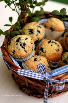 Muffiny jagodowe Bree van de Kampf | Ciasteczkolandia Bree Van De Kamp, Marcia Cross, Breakfast, Food, Style, Morning Coffee, Swag, Essen, Meals