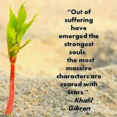 on suffering and strength