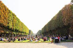 + Jardin du Luxembourg
