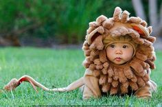 Adorable Baby Halloween costumes that will make you go awww. There's something so fun about adorable babies in Halloween costumes! These pictures of Halloween Baby Costumes are sure to make you smile. So Cute Baby, Baby Love, Cute Kids, Cute Babies, Baby Kids, Baby Baby, Fun Baby, Halloween Bebes, Baby Halloween Costumes