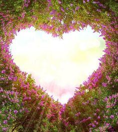 Branches form a heart-shaped pattern , Beautiful Nature Wallpaper, Love Wallpaper, Beautiful Landscapes, Beautiful Roses, Beautiful Flowers, Beautiful Places, Beautiful Pictures, Heart In Nature, Heart Art