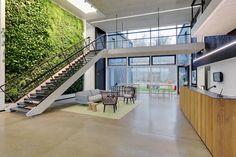 Skanskan vehreät toimistotilat Helsingborgissa #toimisto #design