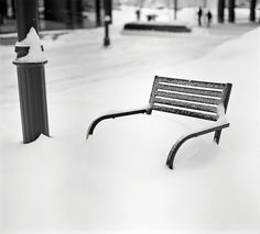 Winter in Anchorage. Chillaxing.   Photo by Brian Adams, Anchorage AK
