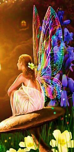 Motýlí víla.   Butterfly Fairy.