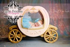 Newborn baby girl in pink Cinderella carriage wearing blue tutu in front of hand painted flower backdrop. Andie Freeman Photography. www.TheAthensNewbornPhotographer.com