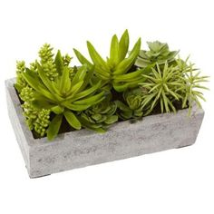 Nearly Natural Succulent Garden with Concrete Planter-4841 - The Home Depot [$61.99]