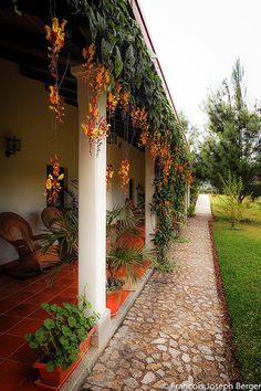 icu ~ Casa Gaya Hotel Coban Altaverapaz Guatemala in 2019 Hacienda Style Homes, Spanish Style Homes, Spanish House, Village House Design, Coban, Mexico House, Kerala Houses, Courtyard House, Tropical Garden