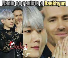 K Meme, Exo Memes, Baekhyun, Kpop, Walking Meme, Chanbaek, Dramas, Random, Funny