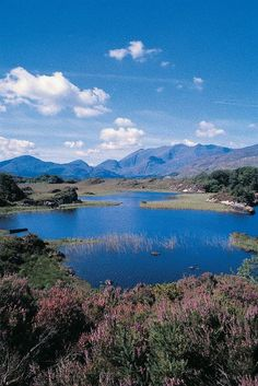 Killarney, Ireland, look at that blue lake and those mountains in the back and tell me that you don't want to go there. Liar.