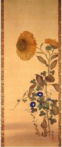 酒井抱一「十二ヶ月花鳥図より」sunflowers and morning glories.