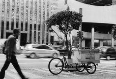 """""""Fazendo Entregas"""" (""""Doing Deliveries"""") by Carlos Alexandre Pereira at www.capfotografia.com"""