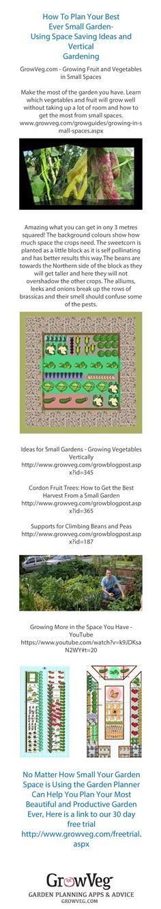 Learn How to Plan Your Best Ever Small Garden. With links to Vertical Gardening information, how to best use fruit cordons and espaliers in the garden, the types of fruit and vegetables that will thrive in a small area. There is a link to the U tube video How to Grow the More in the Space that you have...all designed to help you have your most productive and beautiful garden yet from growveg.com