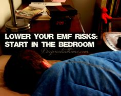 We would be wise to evaluate the electro-magnetic levels in our homes, especially in our bedrooms and those of our children for starters! We spend 1/3rd or more of our life in the bedroom. Please consider doing an assessment of where you and your children sleep. You might call it preventative medicine! Simple Tips To Lower Your EMF Risks ~Start In the Bedroom - Deep Roots at Home