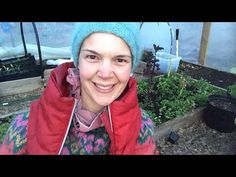 Live from my polytunnel. Spring in my polytunnel. How to be self-sufficient on less than 1 acre. Cabbage Plant, Garden Living, Acre, Countryside, Spring, Day, Mornings