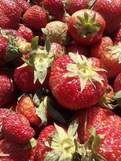 Sezonul de capsuni Strawberry, Fruit, Food, Essen, Strawberry Fruit, Meals, Strawberries, Yemek, Eten