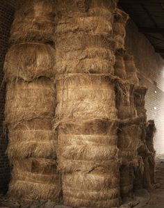 Bales of flax - the reed from which linen fibre is woven. Plant Fibres, Old Tools, Hand Spinning, Spinning Wheels, Rug Hooking, Wool Yarn, Texture, Fiber Art, Weaving