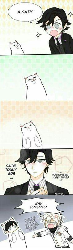 Jumin - Zen [ cat ]
