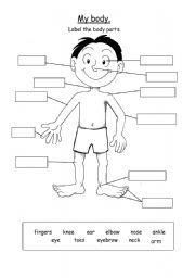 English teaching worksheets: Body parts