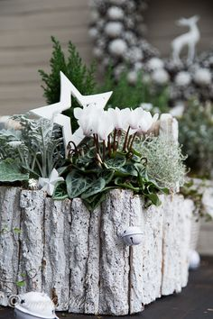 Easy outside Christmas table decorations