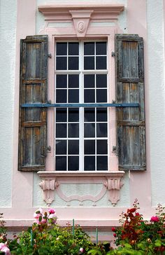 Pink trim on the window