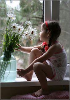 Daisy dreams, mirando por la ventana