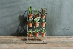 These stylish Jara plant stands are made from sturdy iron. The neat rows of 3 terracotta pots make an attractive and practical base for herbs, succulents and other indoor plants. Add a calming green touch to your interior. Outside Living, Outdoor Living, Hanging Planters, Planter Pots, Indoor Greenhouse, Outdoor Side Table, Terracotta Pots, Rustic Design, Garden Inspiration