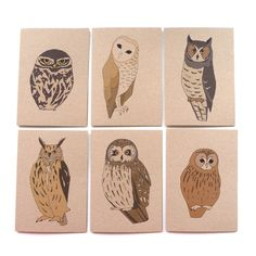 {six owls} by Kate Broughton