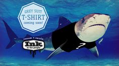 In honor of our company mascot, we will be selling t-shirts on ink to the people to help raise funds for shark conservation.  Be our chum for updates on the shirt and upcoming contests!