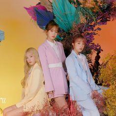 Group Poses, Pop Idol, The Wiz, First Photo, Yuri, Bloom, Photoshoot, Asian, Kpop