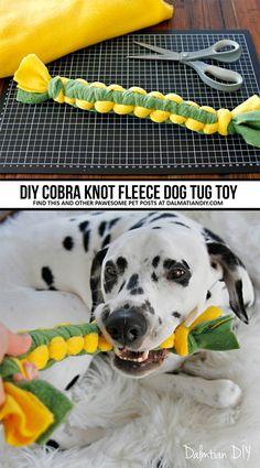 Homemade Dog Toys, Diy Dog Toys, Best Dog Toys, Cat Toys, Toy Diy, Dog Enrichment, Dog Games, Dog Crafts, Toy Puppies