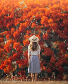 Hello Darwin  in awe of these beautifully colourful floral trees. Wearing @thefablearchive. -- Photo by @jarradseng   @qantas #FeelsLikeHome #QantasInstaDRW by helloemilie