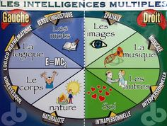 Théorie des intelligences multiples. Could be good to post in the classroom so students can self-identify their learning styles