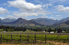From wine farms, gourmet food and charm to French history, this small town a short drive from Cape Town is ...