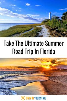 Take an epic coastal road trip this summer and visit Florida's best beaches, islands, and more. This short and sweet journey is perfect for a weekend adventure. Henderson Park, Saint George Island, Visit Florida, Haunted Places, Road Trip Usa, Summer Travel, Day Trips, State Parks, Trip Advisor