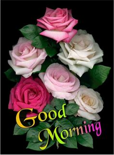 Good Morning Wishes Gif, Good Morning Picture, Morning Pictures, Good Morning Images, Good Morning Quotes, Xperia Wallpaper, Good Morning Wallpaper, Good Night Sweet Dreams, Bom Dia