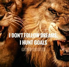 Motivation to start the day off right! Motivacional Quotes, Lion Quotes, Great Quotes, Quotes To Live By, Inspirational Quotes, Qoutes, Wake Up Quotes, Daily Quotes, The Words
