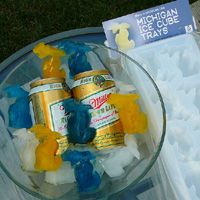 State of Michigan Ice Cube Trays