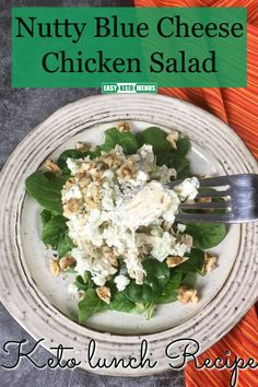 The perfect freezer recipe to make in bulk. Best Nutty Blue Cheese Chicken Salad Recipe. Easy to repurpose for a quick lunch or we're having a lazy dinner night. #ketodiet #ketorecipe Salad Dressing Recipes, Easy Salad Recipes, Real Food Recipes, Keto Recipes, Blue Cheese Chicken, Keto Carbs, Keto Chicken Salad, Easy Keto Meal Plan, Keto Flu