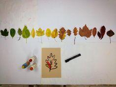Activité d'automne avec des feuilles mortes